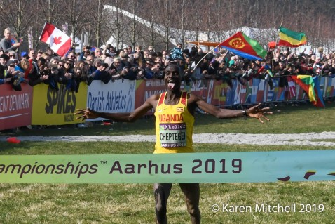 Joshua Cheptegei of Uganda is overjoyed with the World XC title, he worked hard to win.